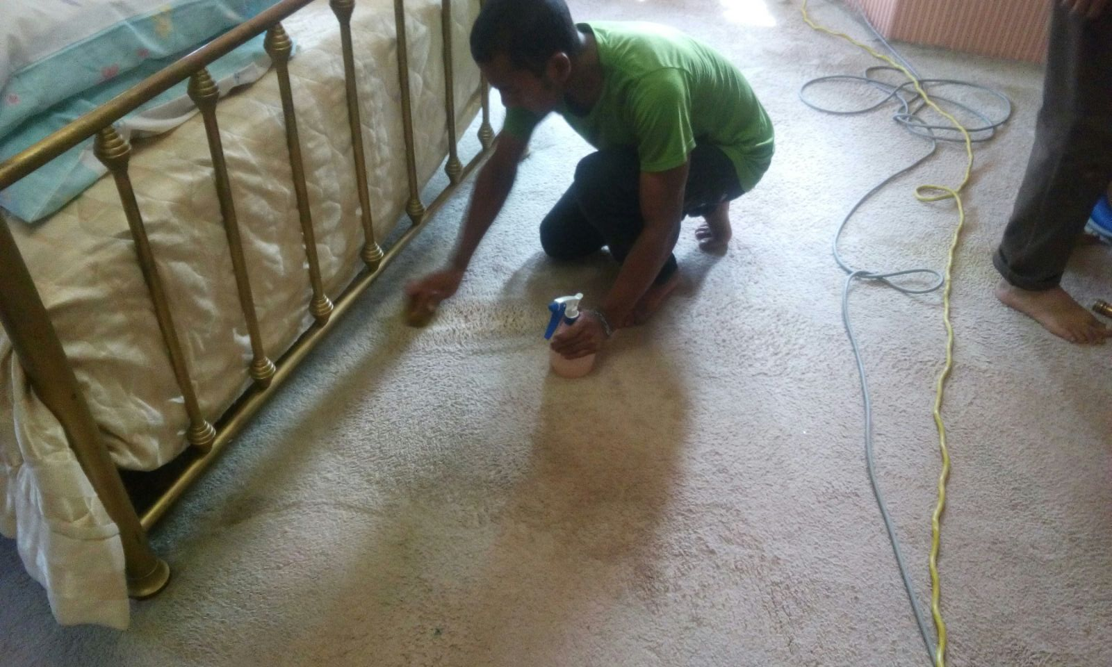 Carpet Steam Cleaning Uniq Carpet Cleaning